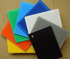 8色のバリエーション 写真